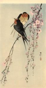 rondini-e-fiori-ciliegio